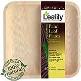 Leafily Palm Leaf Plates - 10 inch Square - Heavy Duty - Elegant - 100% ...